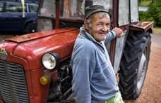 """""""A tatámék Sopronban, apám Bécsben"""" – a Kánaánt keresik a szerbiai vendégmunkások"""