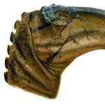 Őrlő szájú, ráncos szemű dinoszauruszlelet Új-Mexikóban