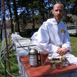 Rajztanárból méhész: Aki a nagymamáját is mézzel tartósítja