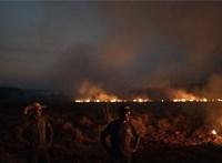 Katasztrofális tüzek veszik körül Sydneyt
