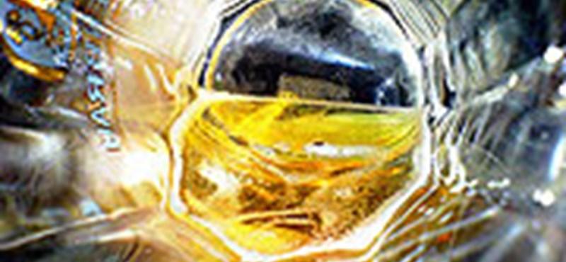 Különleges sörök hódítanak Csehországban