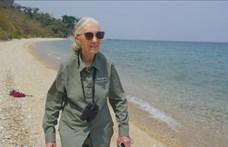 Jane Goodall: Az emberiségnek vége, ha nem változtatunk a koronavírus után