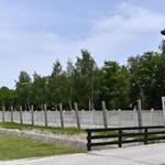 A holokauszt megváltoztatta a túlélők agyi struktúráját – állítják tudósok