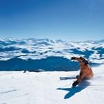 Idén Svájc a síelők legjobb választása