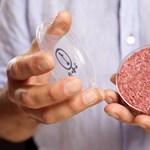 Fotók: így készült a mesterséges marhasús laborburger
