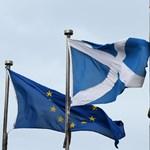 A skótoknak udvarol Valentin-nap előtt Boris Johnson