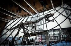 Dinoszaurusztól az eredeti Micimackó-térképig: ezekért fizettek milliókat az idén