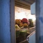 Hűtőt akart vásárolni? Karácsonyi ajándékot kaphat a kormánytól