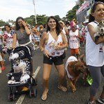 Galéria: kutyakarnevál Rio de Janeiróban