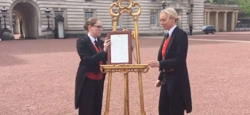 A Buckingham-palota előtt is bejelentették az örömhírt
