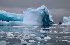 A Holdon és Marson végezhető növénytermesztést tesztelik az Antarktiszon
