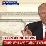 Amerikaiak milliói faraghatnak rá Trump tervére