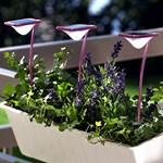Hét izgalmas napelemes kerti lámpa