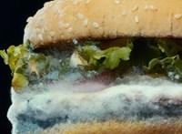 A Burger King új reklámját nehogy evés közben nézze meg