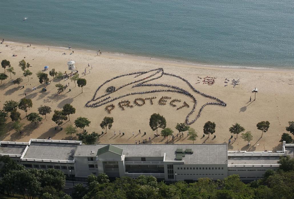 AP. Hong Kong: önkéntesek mellett tizennégy iskola mintegy nyolcszáz diákja és tanára gyűlt össze, hogy közösen hívják fel a figyelmet óceánjaink védelmére. - hét képei nagyítás