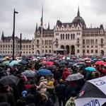 Az Oktatói Hálózat az egyetemek csatlakozását kéri a polgári engedetlenséghez