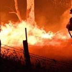 Szükségállapotot hirdettek az Ausztráliai fővárosi területen a bozóttüzek miatt