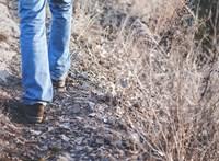 Aki 45 évesen gyorsabban gyalogol, annak fiatalabb a szervezete és az agya