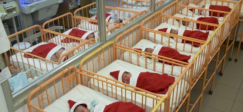 Meglepetés: sok kis Mikulás fekszik a karcagi kórház újszülöttosztályán – fotó