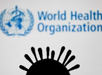 WHO: már 44 országban terjed a koronavírus indiai mutációja