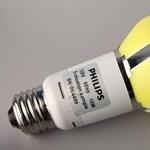 Fotó: 25 évig bírja az új LED-es körte