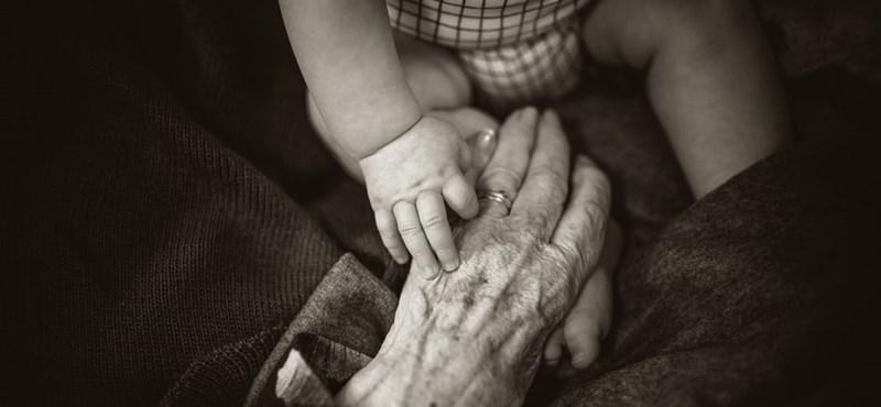 Honnan erednek az egyes generációk nevei?