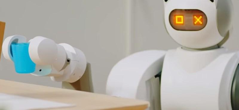 4-ből 1 magyar tart a robotoktól, de a takarítást azért rájuk bíznák
