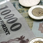 Bruttó 200-220 ezer forint: ennyi az átlagkeresete a természettudományi szakok friss diplomásainak