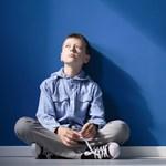 A szülők egyik legszorongatóbb kérdése: mi lesz a gyermekükkel, ha ők már nem lesznek