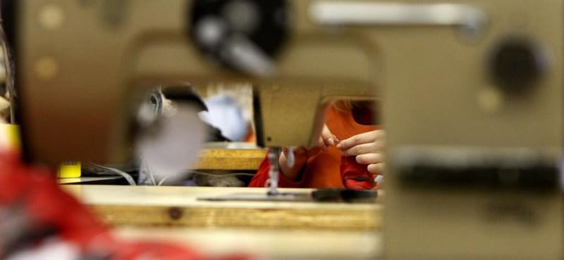 Újabb változások jönnek: már megint reform előtt áll a szakképzés