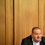 Jogerősen pert nyert az Eötvös Károly Intézet Németh Szilárd ellen