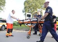 Búzatáblában találták meg a húga megölésével gyanúsított férfit
