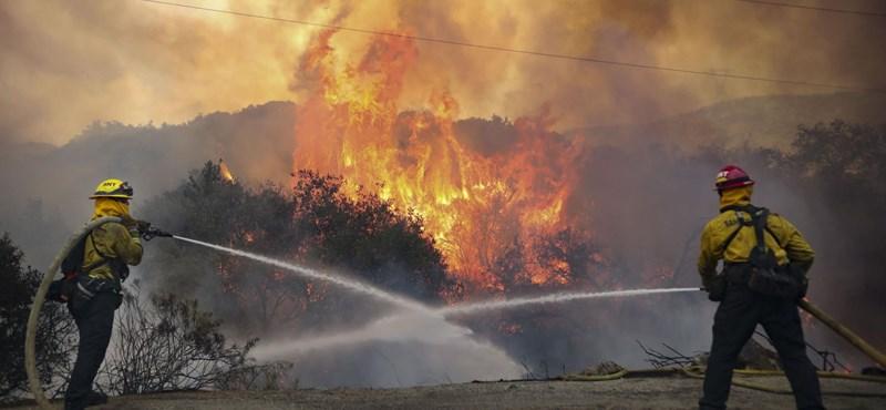 Trump már azt is tudja, ki tehet a kaliforniai erdőtüzekről