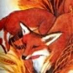 Új logót kapott a Firefox, de senki nem vette észre