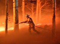 Tüzetesen átnéztek 57 tanulmányt – ugye kitalálja, miért vannak mostanában ekkora tüzek?