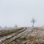 Így harcolhat a téli depresszió ellen