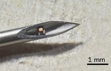 Amerikai kutatók tényleg megcsinálták az emberbe injektálható mikropchipet, de nem azért, amire elsőre gondol