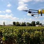 Drónok és szenzorok a magyar szántóföldeken