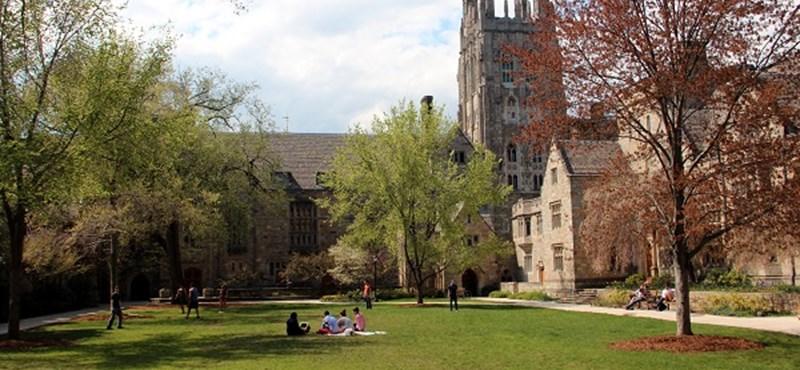A világ egyik legjobb egyetemén tanulhattok jövő nyáron támogatással: újabb lehetőség