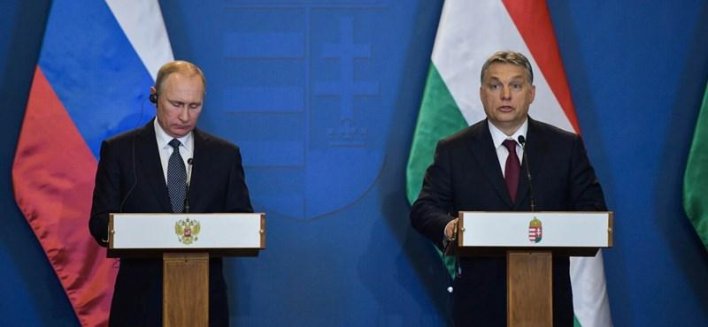 Seres: Jelenetek a Putyin-pincsik életéből
