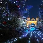 Karácsonyfák a világ minden részén - Nagyítás-fotógaléria