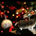 Hogyan kíván Kellemes Karácsonyt a Lanvin?
