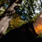 Csúcson a híradós közszolgálat: kánikulában igyon alkoholt!