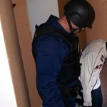 A falból húzták ki a rendőrök a mezőberényi sorozatbetörőt – videó
