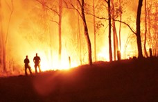 Júliusban közel 7000 erdőtüzet észleltek az Amazonas-medencében
