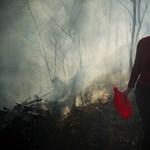 Tizenkétezer szabadtéri tűz, 118 millió forint költség