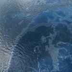 Egy különleges szivaccsal különválasztható a víz és az olaj