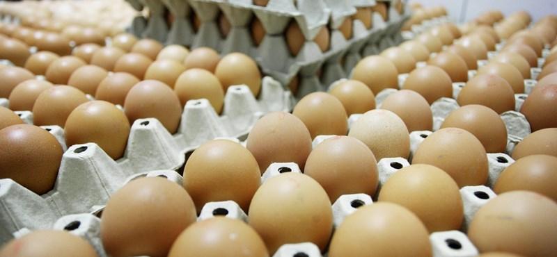 Itt egy ábra arról, hogyan lesz lassan luxus a tojás