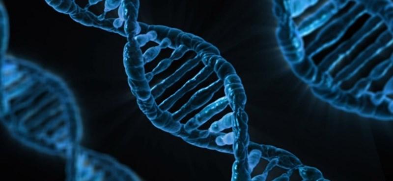 A DNS-javítás miatt járt kémiai Nobel-díj