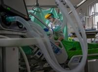 Koronavírus: 111 újabb halott